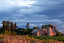Barns / by Stephanie Schan