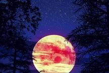 Moon / My far away friend guiding me through the night.