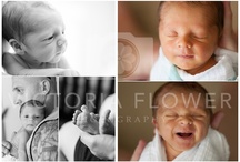 Babies / Some of my favorite images of the babies I've had the honor to photograph!  Victoria Flower Photography | Babies