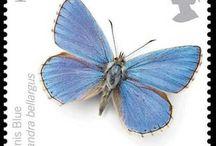 Frimærker sommerfugle