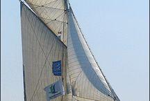 Sails Voiliers