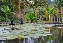 Indonésie - Bali, Java, Lombok / Tous nos séjours à Bali et en Indonésie sur www.labalaguere.com/trek-indonesie.html.