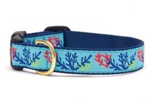 Up Country Leashes and Collars