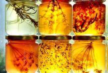 Лекарственные растения Масла