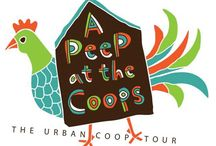Coop Tours Near You / This is all of the great chicken coop tours going on around the country. Look for one happening near you and spread the word! / by Austin Coop Tour