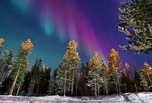 Northern lights / by Dianna Banning