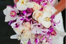 Wedding Ideas / by Barbara Payne