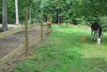Land and Pasture Management