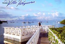 Mi Isla del Encanto