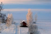 Beauty: Home T Bk: soil: winter
