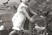 Scènes avec cages