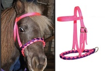 Miniature Horse Tack / Miniature Horse Tack available to miniature horse owners.  Pins are not an indication that there is a connection in any way with WORLD CLASS MINIATURE HORSE REGISTRY, INC.