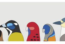 Eggpicnic / Colourful bird illustrations of native Australian birds by local graphic designers Eggpicnic.