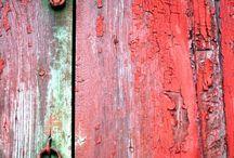 Red Jacqueline van der Venne / Jacqueline van der Venne  red