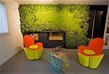 Indoor vertical garden / Indoor vertical garden