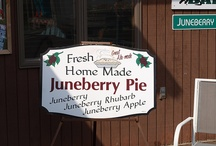 North Dakota Food and Drink / Food you must try while visiting North Dakota.