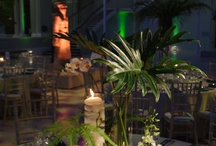 Visuel Jungle Wedding