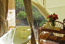 Yurts ⛺️