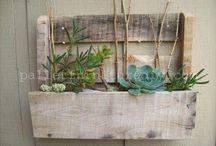 plants & interior inspirations