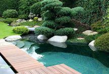 Naturschwimmbecken