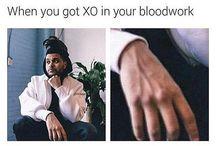 Xo twod