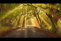 Landscape/nature photography / Tips & Tricks about landscape and nature photography