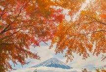 My WORLD (日本)
