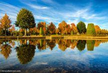 Alireza Behrooz Photography