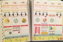 College Organization / by Maggie B