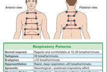 Nursing-Respiratory,Oxygenation