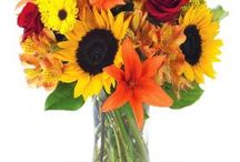 Fall Bouquets / All the colors of Autumn in gorgeous, gift-able bouquets!