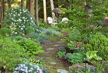 Zahrady / rostliny,cesty,zahradní stavby...