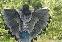 birdcostum