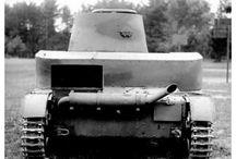 Armia Polska, Polish Army