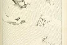 Elementi di anatomia