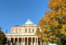 Cheltenham / All things #Cheltenham and #Gloucestershire