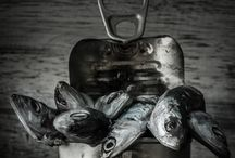 Fish Foodstyling
