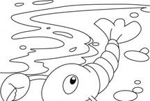 Çizim Balıklar / Su Canlıları