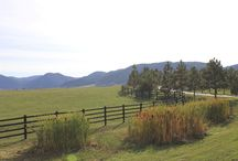 Spruce Mountain Wildlife and Scenery  / The beauty of Spruce Mountain Ranch