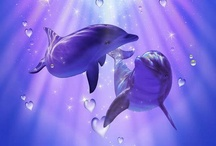 Dolphins / Joyfull animal with a loving comforting energy. Look at them and feel the love they're giving. Their face is always smiling :)