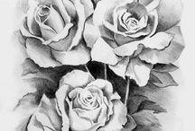 StewArt / Rose