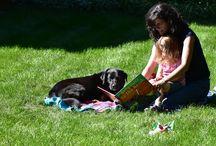 Reading Pets