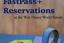 Disney Honeymoon - Fastpass & Magic Bands / 10 Days at Walt Disney World Then a 14 night Disney Cruise through the Panama Canal and up to California for 5 Days at Disney Land. It was getting to crazy had to split my hundreds of pins into groups.