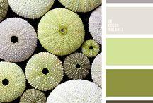 kleur combinatie inspo