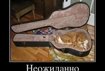 It makes me smile ))
