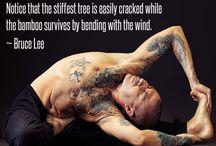 Flexibility Strength Endurance