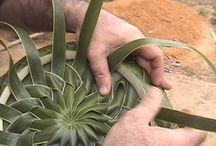 palm craft