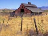 Old Barns / by Darla Barrett