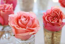 flowers / by Nema