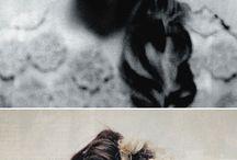Hair n things  / by Alma Tabarez